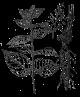 Xuan shen